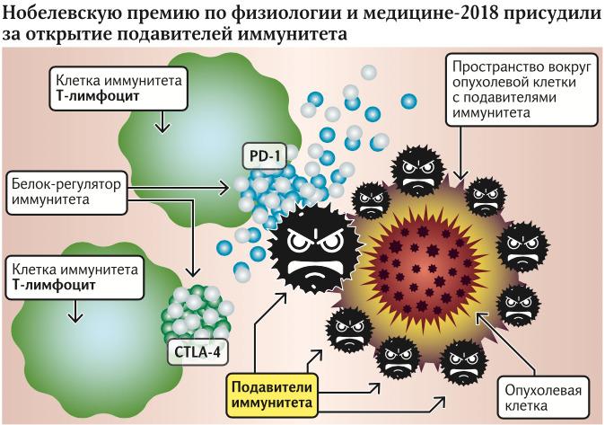 Подавители иммунитета