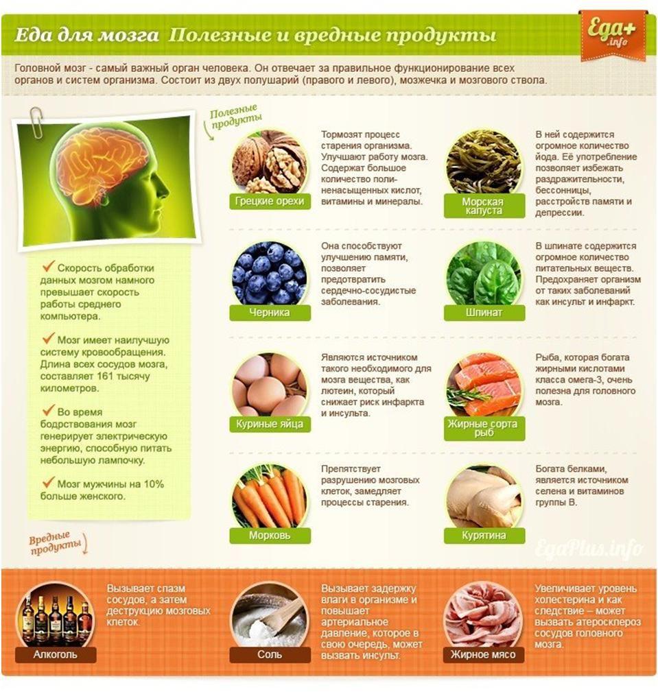 Еда для мозга. Полезные и вредные продукты