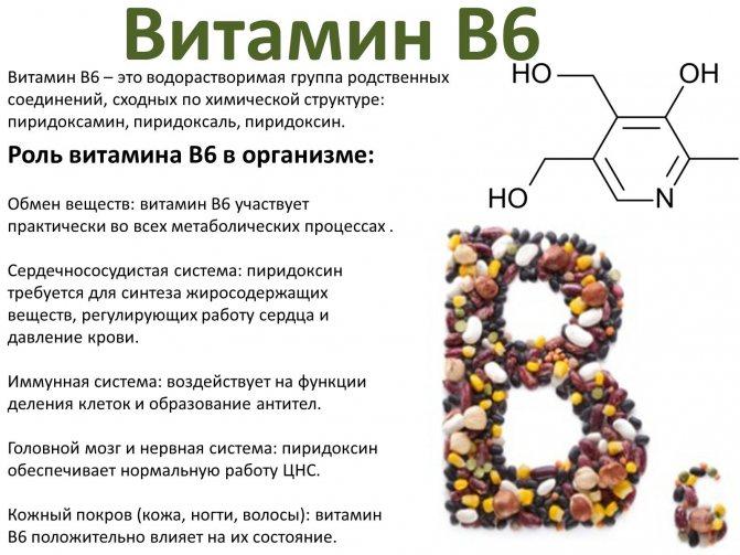 Функции витамина B6