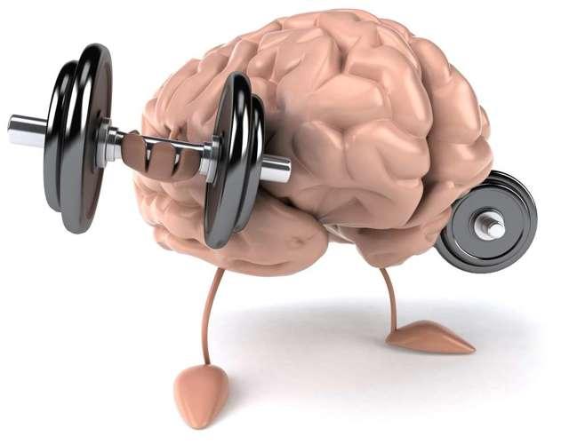 креатин для повышения интеллекта (IQ)