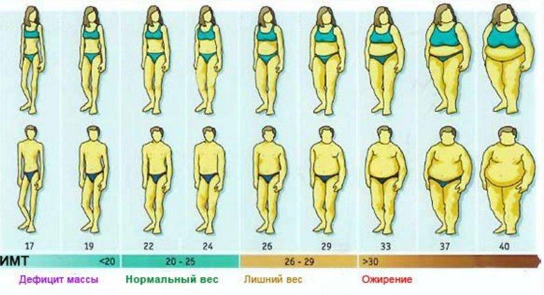 Ожирение и ИМТ