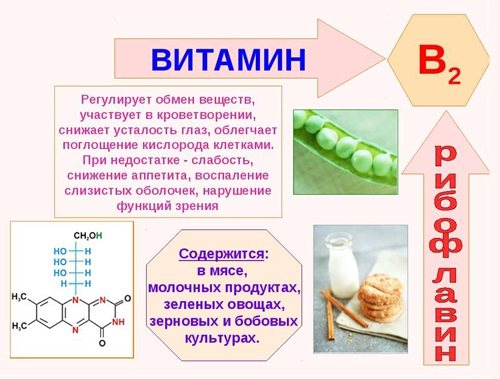 свойства и источники витамина В2 (рибофлавин)