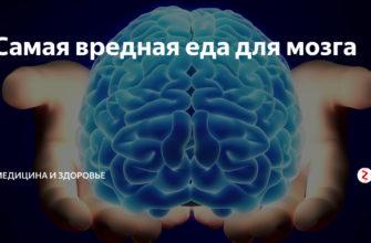Вредная еда для мозга