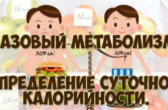 Базальная скорость метаболизма